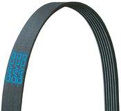 Dayco Poly Rib Belt