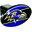 Trik Topz Baltimore Ravens Hitch Cover