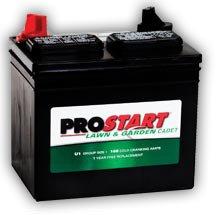 Prostart® Lawn & Garden Battery